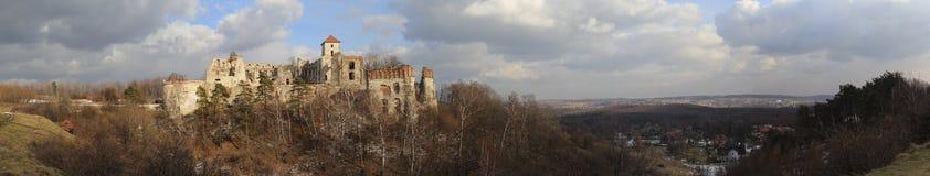 Tenczyn castle ruins in winter.panorama stock photo