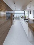Tendência contemporânea da cozinha Foto de Stock Royalty Free