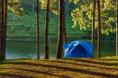 Tenda blu per il campeggio nella foresta del bacino idrico di Huai Makhuea Som Fotografie Stock Libere da Diritti