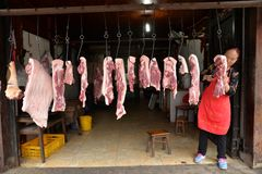 Tenda chinesa da carne de porco fotos de stock