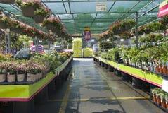 Tenda della visualizzazione del centro di giardino fotografie stock