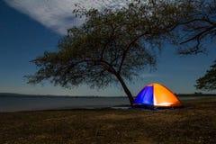 Tenda di campeggio arancio illuminata sotto l'albero Fotografia Stock Libera da Diritti