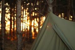 Tenda di campeggio nel più forrest Fotografia Stock