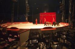 Tenda di circo interna Fotografia Stock Libera da Diritti
