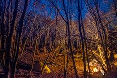 Tenda illuminata con la luce del fuoco di accampamento Fotografie Stock Libere da Diritti