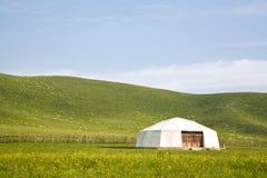 tenda nel pascolo Fotografie Stock