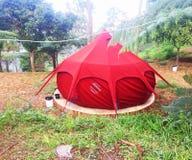 Tenda rossa della natura nella foresta fotografia stock libera da diritti