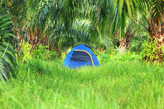 Tenda turistica Fotografia Stock Libera da Diritti