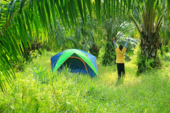 Tenda turistica con il ragazzo Immagine Stock