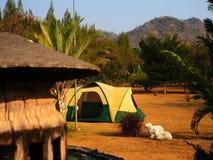 Tenda turistica in parco fra il prato Fotografia Stock Libera da Diritti