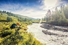 Tenda turistica su alba di alba del campo del prato della montagna Fotografie Stock Libere da Diritti