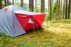Tenda in una foresta Fotografia Stock Libera da Diritti