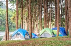 Tenda variopinta in foresta sull'alta montagna nella festa Immagine Stock