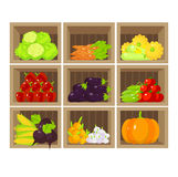 Tenda vegetal local Loja de alimento biológico fresca Fotos de Stock Royalty Free