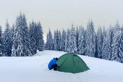 Tenda verde in montagne di inverno Fotografie Stock