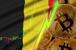 Tendance croissante de drapeau et de cryptocurrency de la Belgique avec beaucoup de bitcoins d'or illustration stock