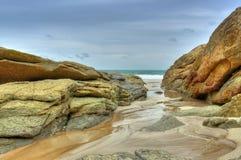 Tendance de boue entre les roches Photos libres de droits