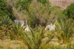 Tendas no parque da nação do Vale da Morte, Califórnia Fotografia de Stock