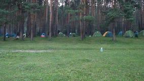 Tende d'annata di POV al campeggio della riva del fiume, mattina di estate nel tempo di vacanza dell'abetaia in natura stock footage