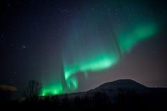 Tende degli indicatori luminosi nordici (aurora Borealis) Immagine Stock Libera da Diritti