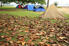 Tende di campeggio Fotografie Stock Libere da Diritti