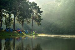 Tende di campeggio al campeggio all'aperto vicino al lago con luce solare a Immagini Stock Libere da Diritti