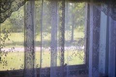 Tende di pizzo sulla finestra domestica che guarda fuori per inverdirsi spazio Immagini Stock Libere da Diritti