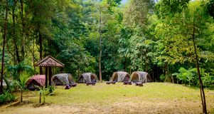 Tende turistiche del cammuffamento in foresta al campeggio fotografia stock libera da diritti