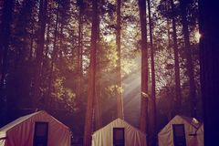 Tende in Yosemite Fotografie Stock Libere da Diritti
