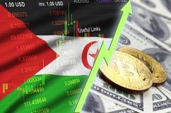 Tendencia cada vez mayor de la bandera y del cryptocurrency de Western Sahara con dos bitcoins en billetes de dólar libre illustration