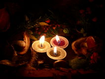 Tendencia del otoño Imágenes de archivo libres de regalías