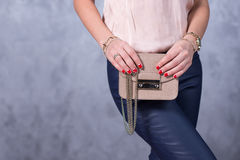 Tendencias de la moda de los bolsos Ciérrese para arriba de bolso elegante magnífico Fashionab Fotografía de archivo