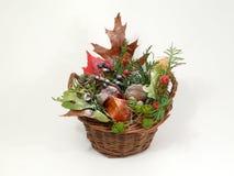 Tendenza di autunno Immagini Stock