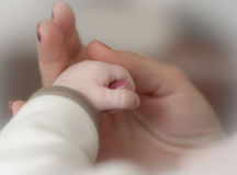 Tender. Litle fist of newborn baby, holding  mothers hand Stock Photos