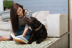 Tender attentive woman showing something to her Labrador Royalty Free Stock Image