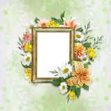 Tender background with frame and beautiful flowers Stock Photos
