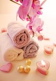 Tender bath accessories Royalty Free Stock Image