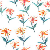 Tender beautiful delicate bright sophisticated spring colorful herbal textile yellow orange dandelions with green leaves pattern. Watercolor hand sketch Royalty Free Stock Photo