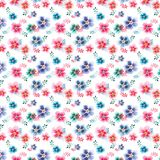 Tender beautiful floral herbal gorgeous bright cute spring colorful mallow different shapes with colorful streaks pattern. Watercolor hand sketch Royalty Free Stock Photos
