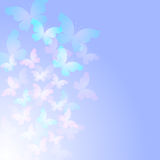 Tender blue abstract background with transparent butterflies. Royalty Free Stock Image