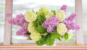 A tender bouquet of lilac and buldenezh Stock Images