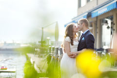 Tender bride and groom in wedding day Stock Images