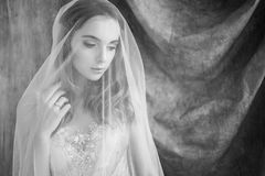 Tender bride under the veil. Bride looks tender hidden under the veil. Lovely portrait of the bride stock photo
