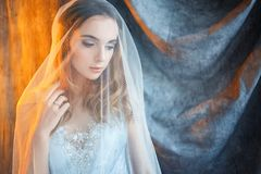 Tender bride under the veil Royalty Free Stock Photography