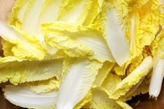 Tender chinese cabbage Royalty Free Stock Photo