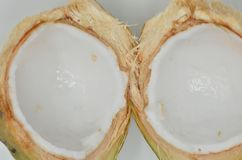 Tender coconut. A closeup picture of whitish tender coconut Stock Images