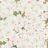 Tender and elegant vintage floral seamless pattern. Stock Images