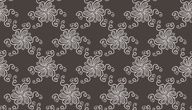Tender Elegant White Flower pattern on dark grey Stock Photos