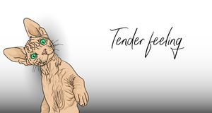Tender feeling.Funny bald cat is not against tender feelings. Cute Sphinx waving his paw beckoning to him to cuddle royalty free illustration
