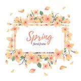Tender Floral summer or spring frame template Royalty Free Stock Image